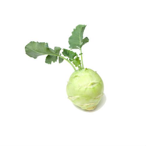 калорийность капусты кольраби