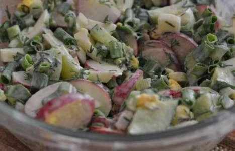Салат из редиса с яйцом, огурцом и зеленью рецепт с фото по шагам - фото 4 шага